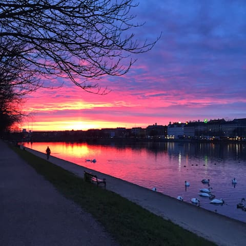 See the sunset at the copenhagen lakes - so beautiful