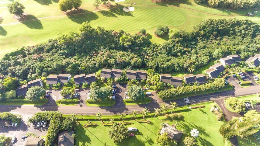 Arial view of entire Hale Moi Condominium Complex. Your building is the first on left side.