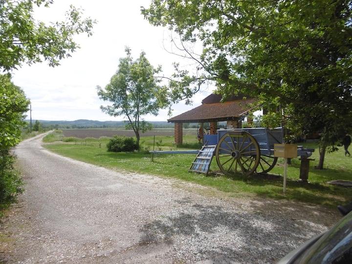 Domaine de la Reguinnade 11400 Mireval Lauragais