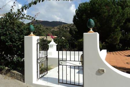 Orange garden villa