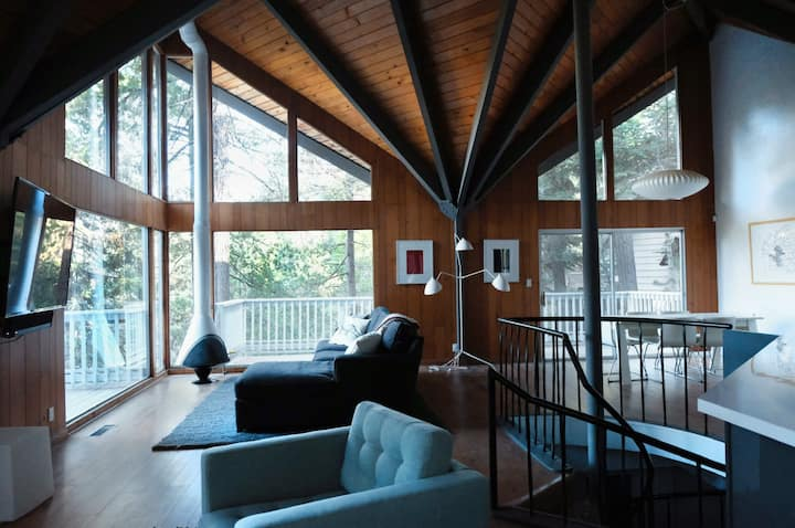 Mid-Century Modern Cabin + Lake Passes (No Pets)