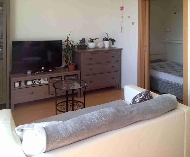 Slunný byt v Nymburce  (50 km od Prahy)