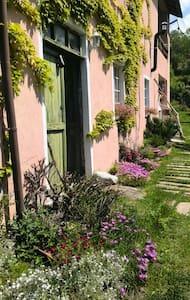 La maison di Babette - Cartosio
