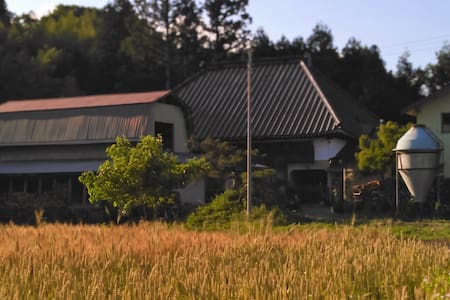 Thatched roof, Japanese hearth, Walk with a goat