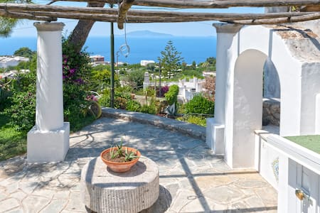 Delightful apartment with garden and stunning view