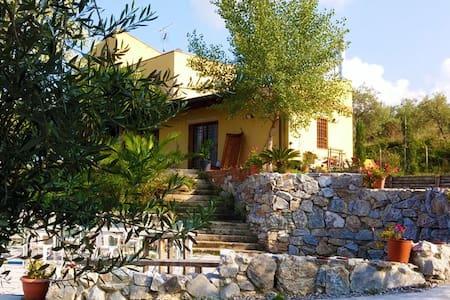 Casa in uliveto con piscina - San Pier Niceto