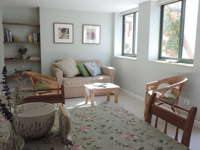Desert Rose Sde Boker Family Apartment
