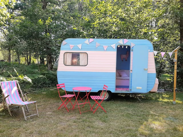 Vintage caravan on 3* campsite with pool