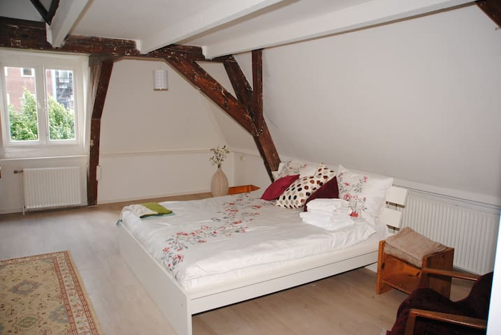 Zala's B&B under the Dom - Utrecht - Bed & Breakfast