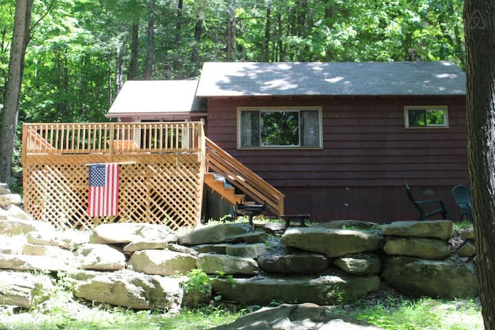 Lakeside Cabin with Boat Dock #3