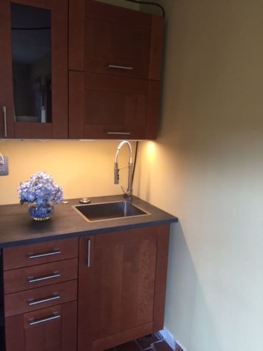 Small kitchenette, currently without stove but with microwave and fridge