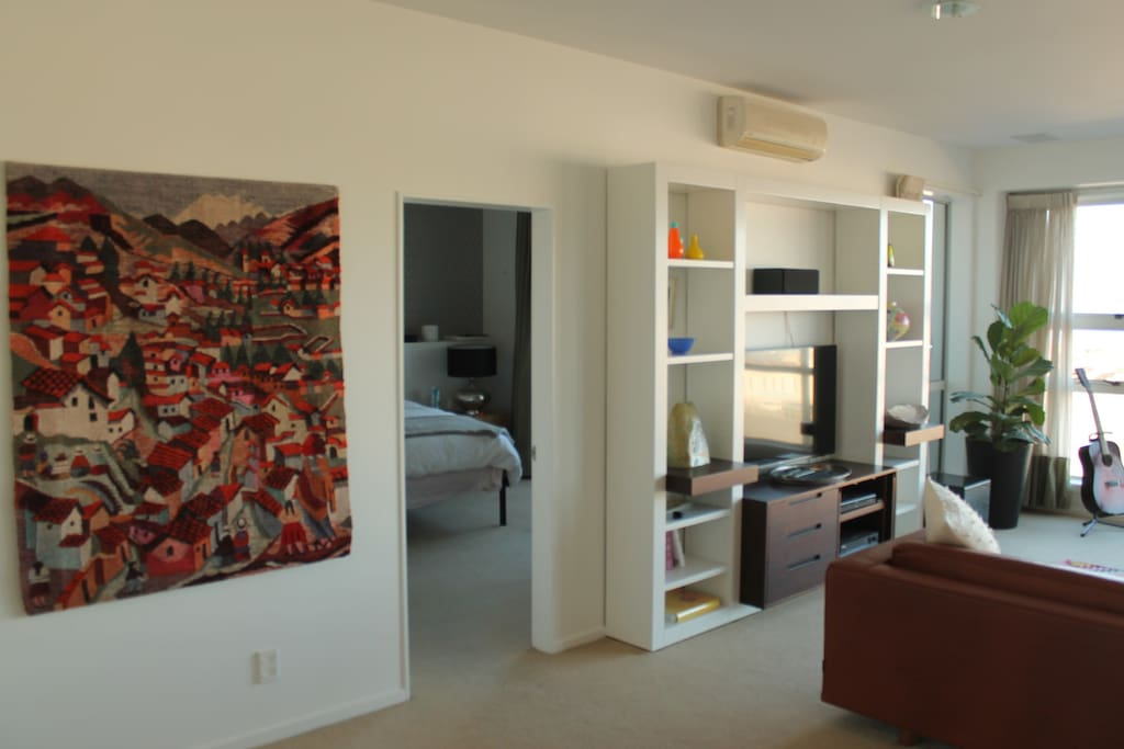 Living room/Master bedroom (with fold out couch)