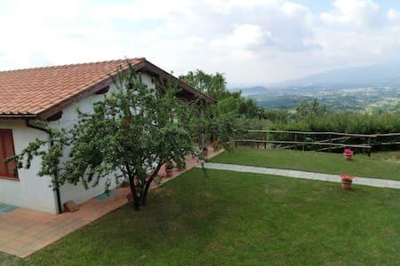 """""""la vigna"""" Casolare tra le colline lucchesi - Capannori - Talo"""