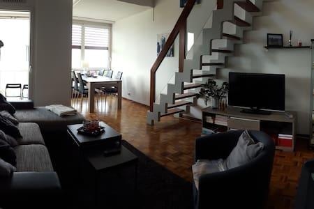 Nice room in vevey - Vevey