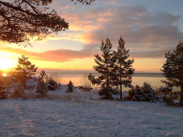 Havsnära på Höga kusten - Barsviken