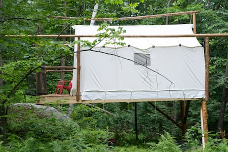 Treehouse style wall tent