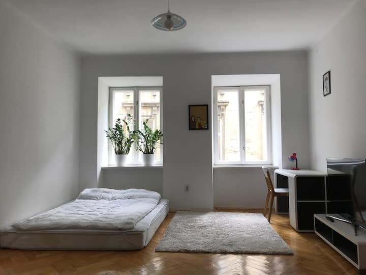 Comfortable apartment in the heart of Lviv