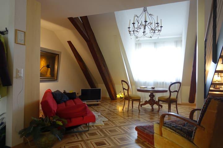 Elegant pied-a-terre in historic Olten - Olten - Daire
