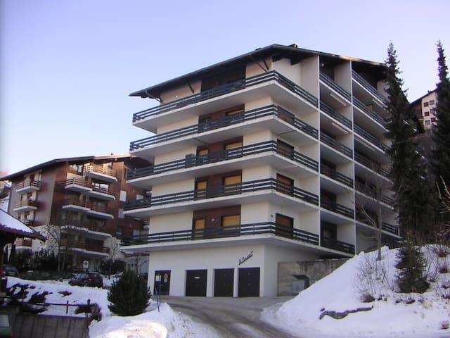 Sonnige Wohnung mit top Aussicht im Skigebiet - Nendaz - Leilighet