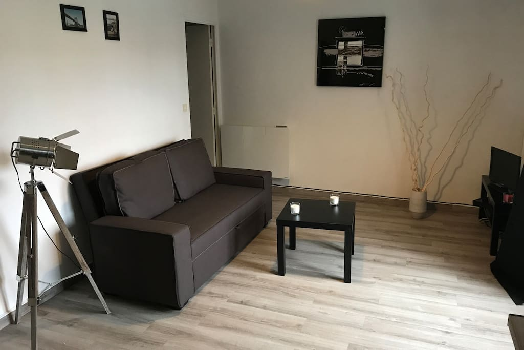Nice living room with sofa bed