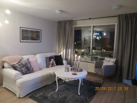 Beautiful bright apt. 40 km from the Golden Circle
