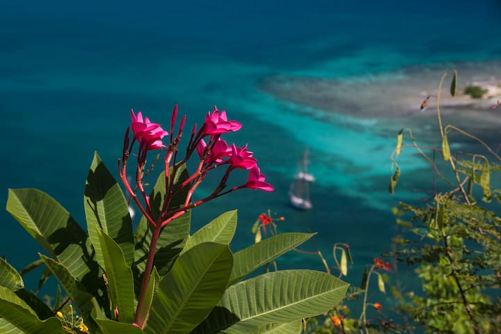Astral Ridge | St John Villa | Magical Coral Bay
