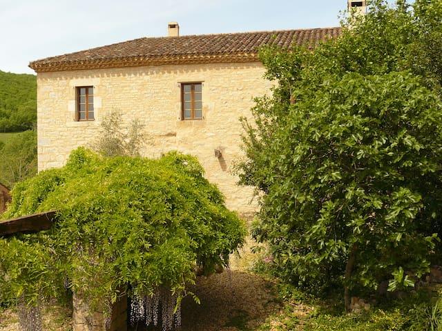 Les fenêtres du gîte avec vues imprenables sur la nature et le village médiéval