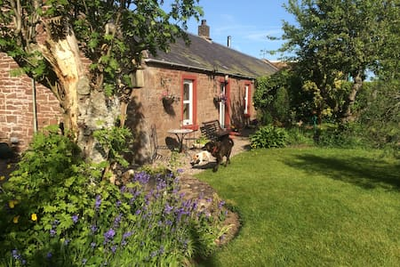 Period cottage in the Angus glens - Dogs welcome - Tannadice - Bed & Breakfast