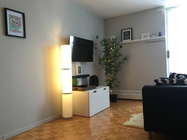 Cozy apartment in Verdun Montreal