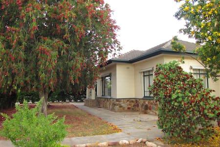 Student Accommodation - Edwardstown