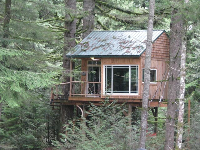 Treehouses In Oregon - Group guys build epic treehouse gaming