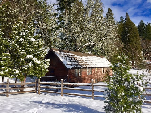 "Crater Lake ""Bunkhouse"" on 100 acre ranch & trails"