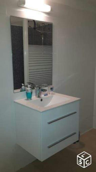 Une salle de bain équipée d'une douche, d'un lavabo et d'un Wc indépendant.