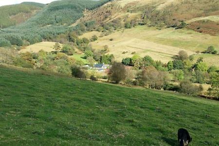Blaen y Cwm Cottage