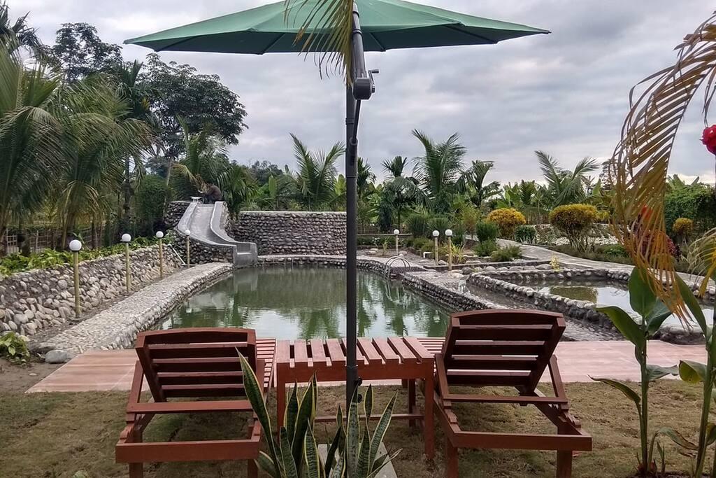 Natural Swimming Pool (Chlorine Free)