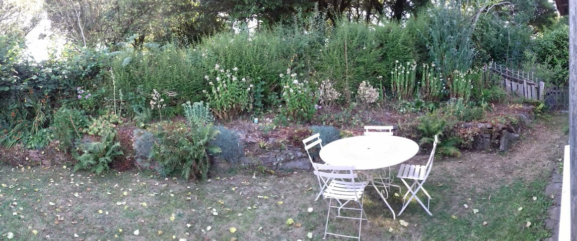 Sunny secluded garden