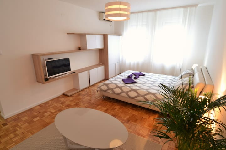 New Belgrade Arena cozy studio