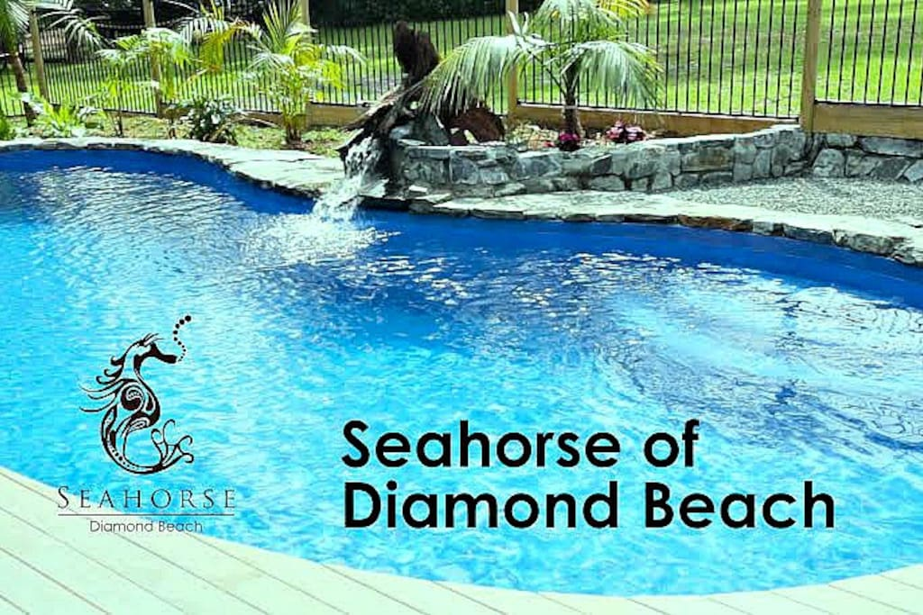 Your own private tropical pool - Sea Horse Diamond Beach