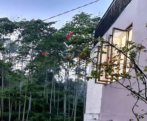 Unique Villa in Wanayasa Purwakarta