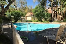 The Oasis Resort has 8 swimming pools
