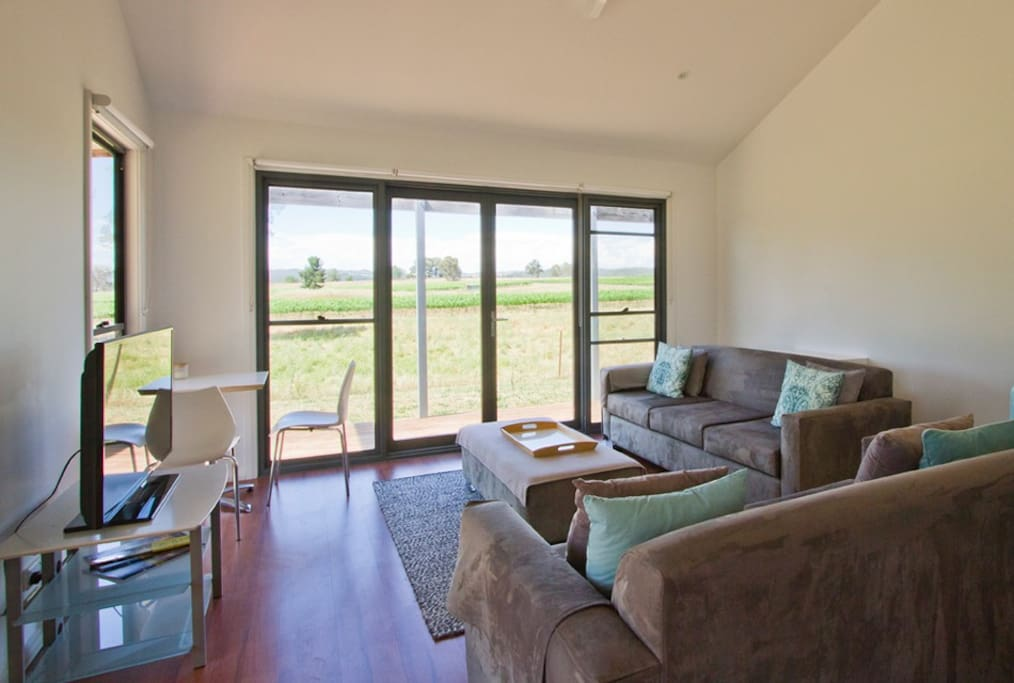 Studio with 2 sofas and views over the vines