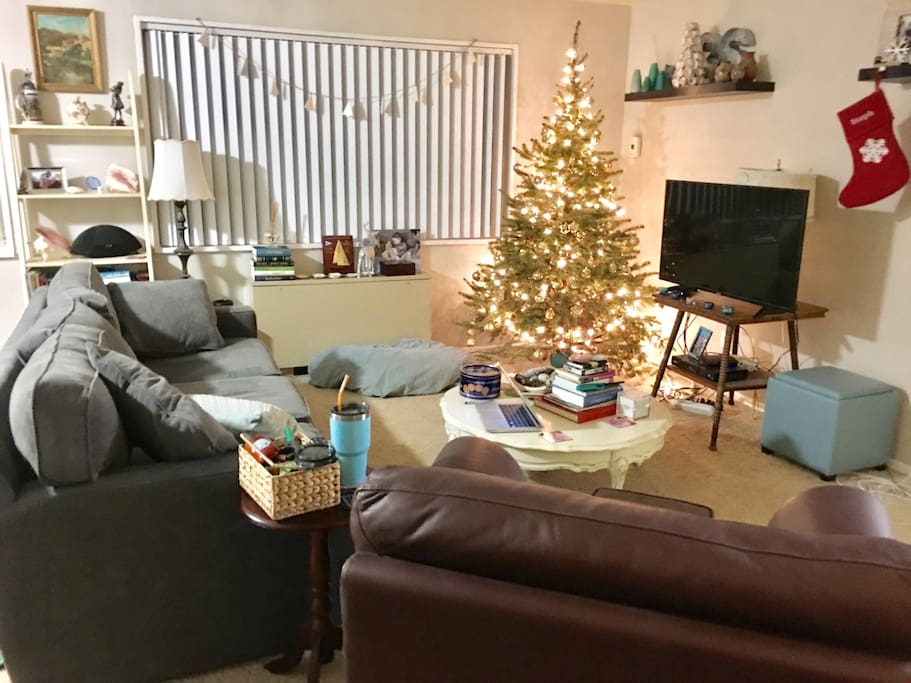 Living room with comfy couch that can serve as the place for the third person to sleep. TV has cable and roku. Christmas tree and decorations will be down.