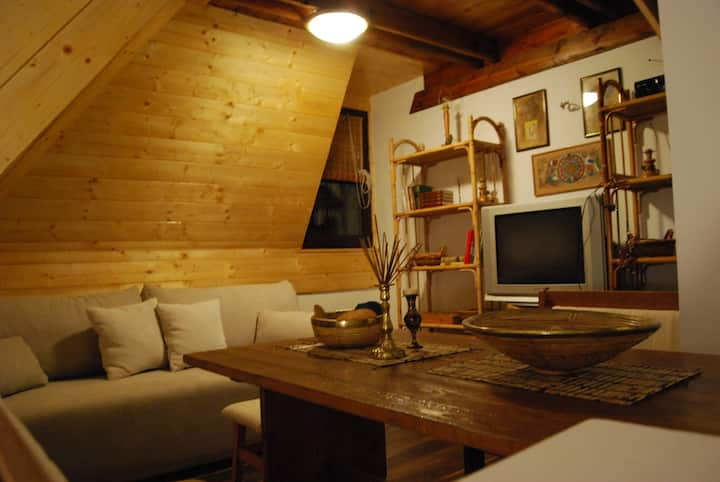 Zlatibor the Only Pine apartments aprtman A3