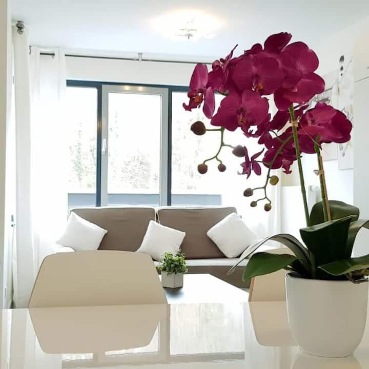 Il Mare luxury appart Hotel 2