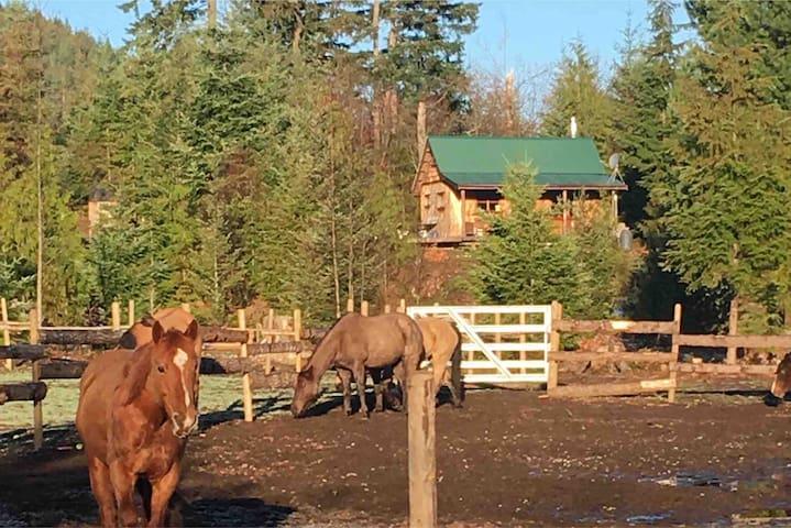 Maple Heart Ranch/Homestead