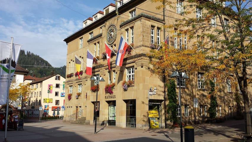 Reiseführer für Schramberg und Umgebung. Travel guide around Schramberg and surroundings
