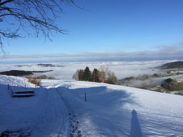 Skifahren am Schauinsland