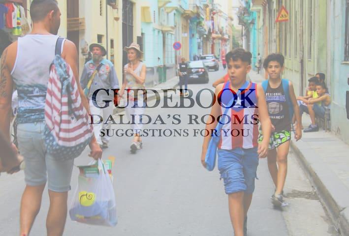 Guidebook for La Habana