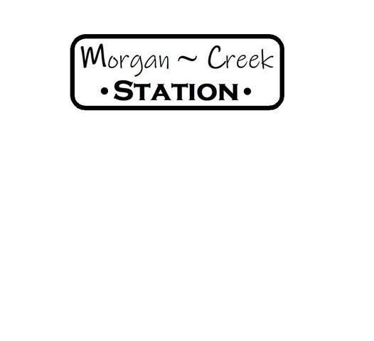 Morgan Creek Station Guidebook