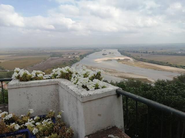 Visita Cultural à Fundação Passos Canavarro, Santarem, 19Km